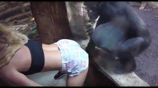 Videos de Risa de Animales 2018 - Los Mejores Videos Graciosos de Animales