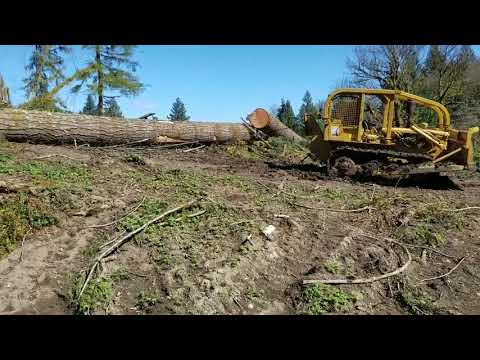Logging Douglas Fir With Cat D4D