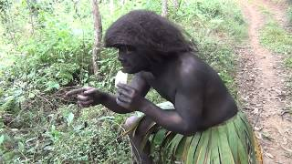 Primitive Life - Primitive Girl Finding Food Meet Gorilla People in Forest