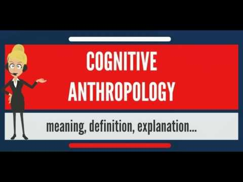 What is COGNITIVE ANTHROPOLOGY? What does COGNITIVE ANTHROPOLOGY mean?