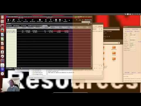 Demo of Interactive Brokers TWS with Java on Ubuntu Linux