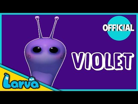 LARVA - MEET VIOLET   Larva Cartoon Funny Bits   Cartoons   Comics   LARVA Official  
