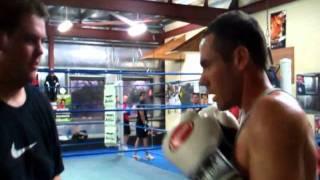 Blue Cattle Dog Boxing Gym Sydney Nsw Australia