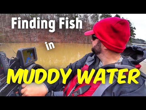 Bass Fishing - How To Find Fish When The Water Is Muddy
