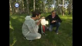 видео Уничтожение клещей | Единая Санитарная Служба