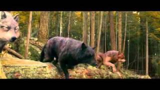 Twilight - Mortal Combat