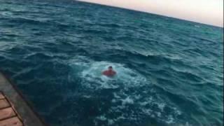 видео: Жёсткий пловец