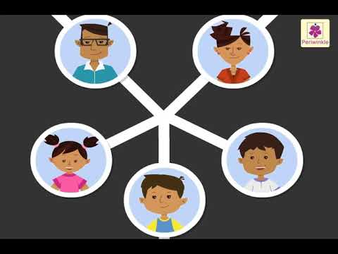 Family Tree For Kids Periwinkle Youtube