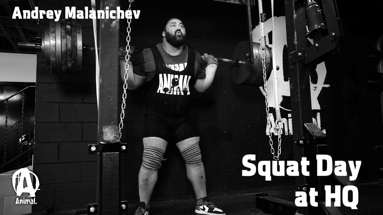 Andrey Malanichev Squat Day at Animal HQ