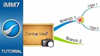 Branch Pinning - iMindMap 7