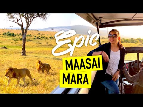 Masai Mara Kenya Safari Guide DAY 1 | OUR EPIC KENYAN SAFARI ADVENTURE