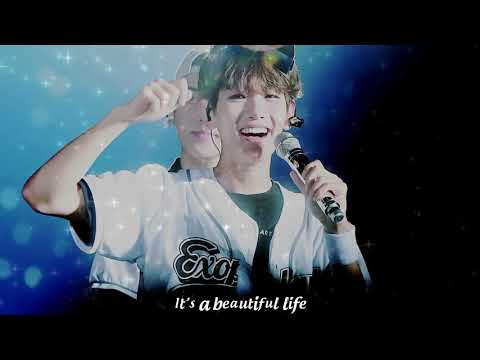 Our Cute Bacon - Byun Baekhyun (Beautiful Vietsub)