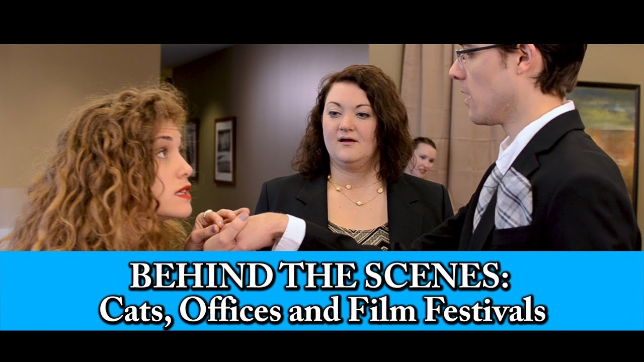 Behind the Scenes | Cats, Offices and Film Festivals