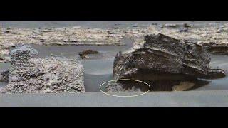 EXPLORING 15 NEW NASA CURIOSITY ROVER MARS IMAGES