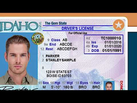 yellow star on colorado drivers license