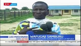 Wafugaji wa Samburu watafuta soko la ng'ombe