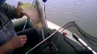 Рыбалка  ловля карася на кольцо. Волгодонские водоемы!