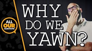 Repeat youtube video Science of Yawning