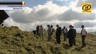 видео Предприятия АПК - Сельхозпредприятия - Беларусь