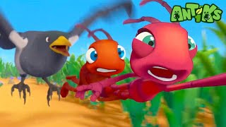 Oddbods Present: Antiks | Mysterious Flying Object | Funny Cartoons For Kids