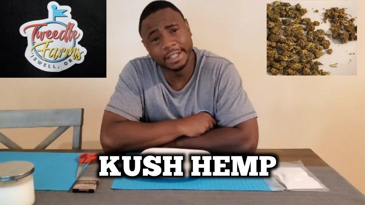 Tweedle Farms (Kush Hemp) first impression shake review - YouTube