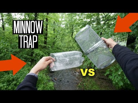 Minnow Trapping!! Homemade Bottle Trap vs Minnow Trap!
