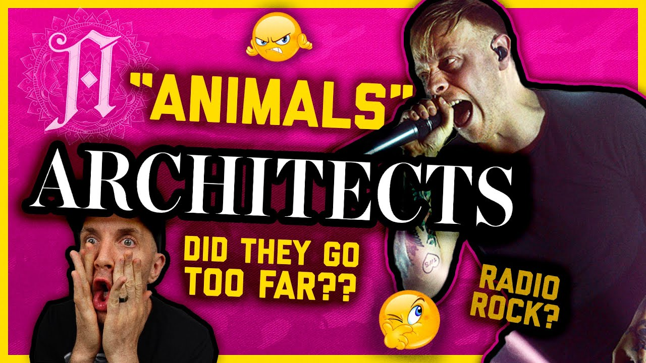 """ARCHITECTS """"ANIMALS"""" Track Review (it's frustrating!)"""