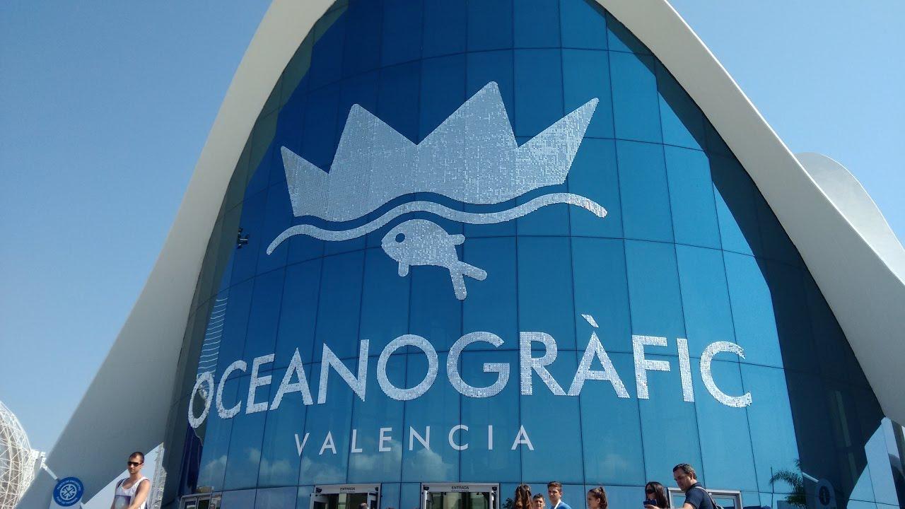 Oceanografico di valencia oceanogr fic de valencia for Oceanografico valencia