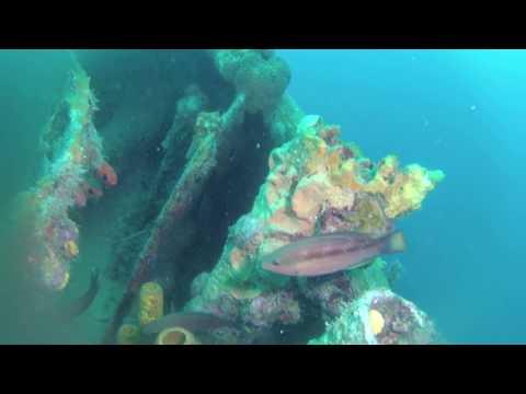 Plongée sur l'épave le St.George. Caraïbes.
