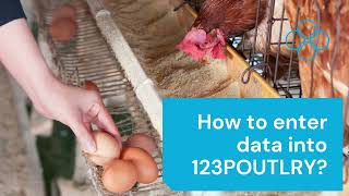 How to enter data into 123POULTRY