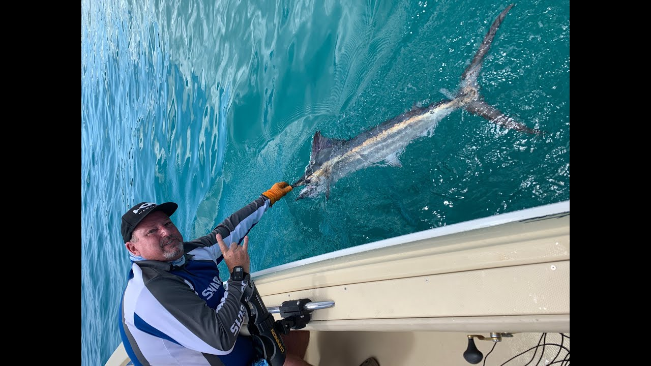 Marlin fishing in Hervey Bay