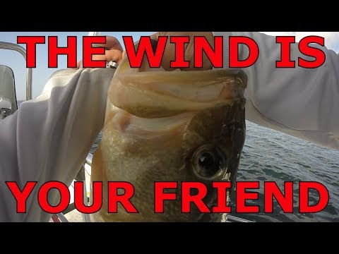 Fayette Reservoir Lake Bass Fishing, The Wind Is Your Friend With The Carolina Rig Late June 2018