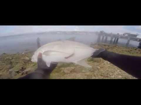 Fishing Cebu: Hooked up to a BIG Fish!