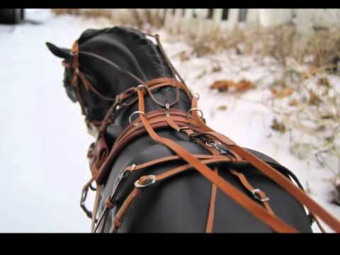 hqdefault new tack!!! breyer harness for wintersong!! (for sale!!!) youtube