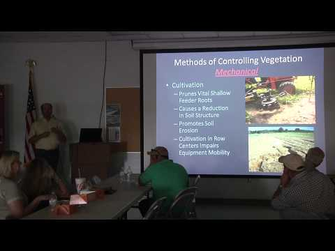 Texas Olive Field Day