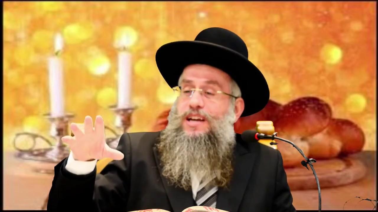 הרב אברהם אבידר- הלכות שבת -האכלת חיות בשבת!!!