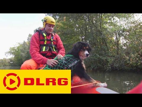 DLRG Tierrettung