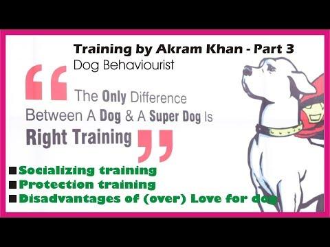 Part 3 Dog Training by Akram Khan in hindi | Socializing training | Protection training