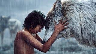 12 Kinder, Die Von Wilden Tieren Großgezogen Wurden