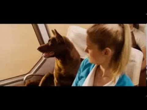 RED DOG Bande-annonce VF