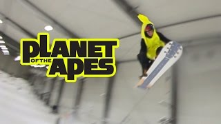 Burton Planet of the Apes 2015