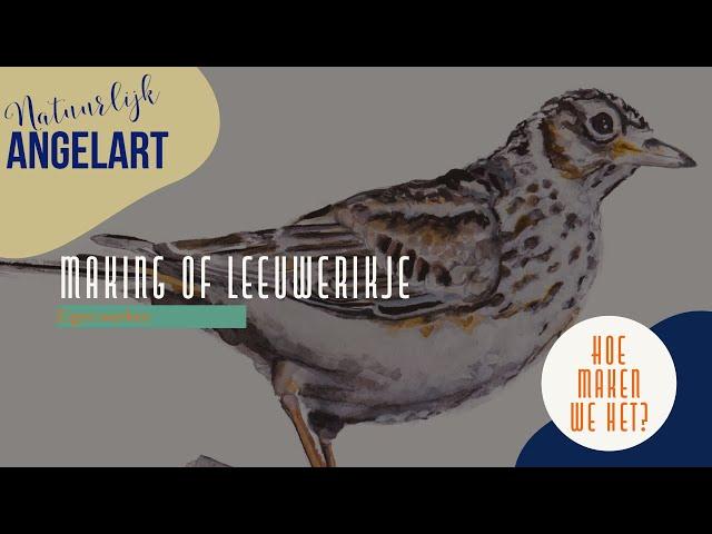 Vogeltjes in Aquarelverf HOE MAKEN WE HET - The making of leeuwerikje