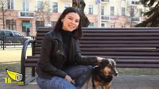 Минск. Всё о домашних животных, уход, лечение, питание и тренировки. НЕБАНАЛЬНЫЙ ГОРОД