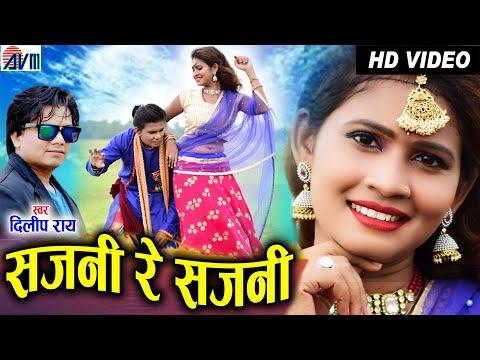 Dilip ray   Cg Song   Sajni Re Sajni   Salini   New Chhattisgarhi Gana   HD Video 2021   AVM STUDIO