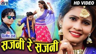 Dilip ray | Cg Song | Sajni Re Sajni | Salini | New Chhattisgarhi Gana | New Cg Dj Song | AVM STUDIO