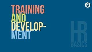 HR Basics: Training and Development