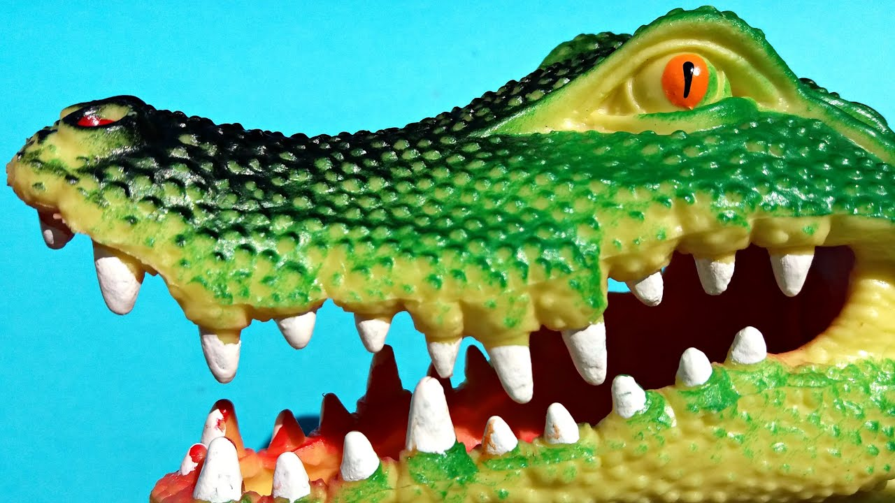 Giant Crocodile Toy For Kids Review. Interesting Facts ...