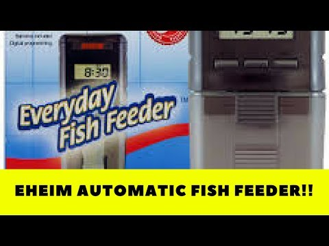 Eheim Battery Operated Auto Fish Feeder Review