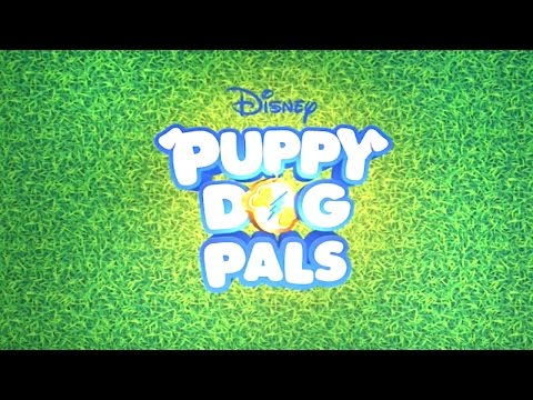 Puppy-Cam! | Puppy Dog Pals | Disney Junior