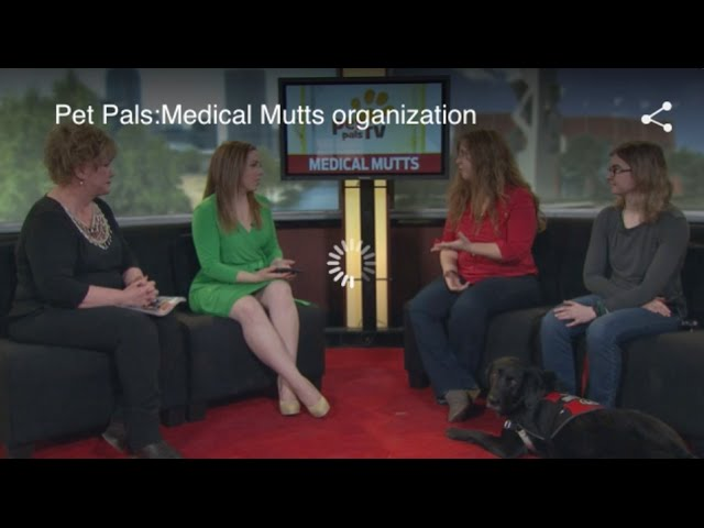 Autism Service dog - Medical Mutts on Pet Pals TV